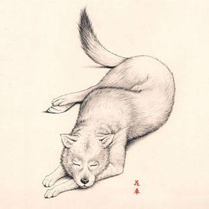 特长 动物植物人物 铅笔画に水彩ペン画でモノクロ cgはポップな色で