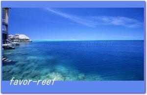 広告写真素材・動画イラスト素材 favor-reef
